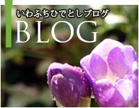 blog-sp